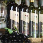 São Roque celebra o Dia do Vinho