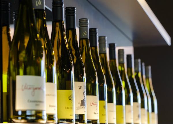 novos vinhos