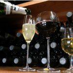 Serra Gauchá recebe 1ª Wine South America